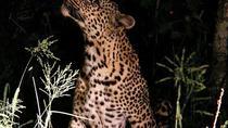 Buyela e-Africa , Tented safari tour in the Pilansberg BIg 5 nature reserve, Johannesburg,...