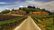 2day private tour of wine region in Czech Republic from Vienna, Vienna, Private Sightseeing Tours