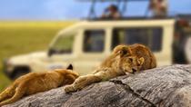 5 Days Tanzania Safari to Serengeti and Ngorongoro Crater, Arusha, Multi-day Tours