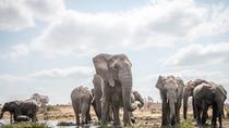 8 Days Serengeti National Park, Ngorongoro crater & Zanzibar, Arusha, Attraction Tickets