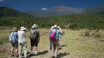 Day Trip tour to Arusha National Park, Arusha, Day Trips
