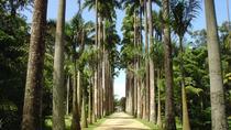 Botanical Garden Tour, Rio de Janeiro, Nature & Wildlife