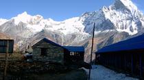 Cheap Annapurna Base Camp Trekking, Kathmandu, Multi-day Tours
