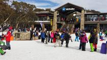 Mt Buller Day Trip from Melbourne, Melbourne, Day Trips