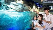 Aqua Planet 63 ticket, Seoul, Theme Park Tickets & Tours