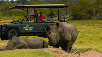 2-Hour Guided Game Drive at Kragga Kamma Game Park, Port Elizabeth, Nature & Wildlife