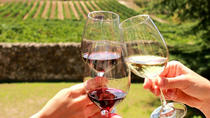 Stellenbosch, Franschoek and Paarl Full Day Wine Tour, Cape Town, Wine Tasting & Winery Tours