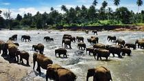 Sri Lanka on a shoestring per two person for 8 days tour, Colombo, Ports of Call Tours