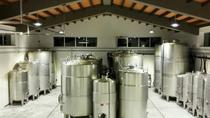 Authentic experience in organic winery, Trapani, Wine Tasting & Winery Tours