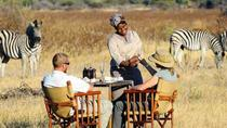 Affordable Safari from Dar Es Salaam - 3 Days Selous Game Reserve, Dar es Salaam, 4WD, ATV &...