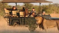 Cruise Shore Safari - Daytrip Selous Game Reserve, Dar es Salaam, Ports of Call Tours