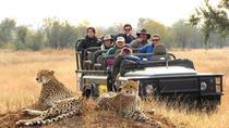 Kruger Group Safari 6 Day & 5 Nights Lodge ,Treehouse Safari, Johannesburg, 4WD, ATV & Off-Road...