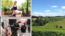 Five Senses Tour - Emotional Wine Tasting and Pure Lunch, from vineyard to table, Montepulciano, ...
