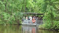 90-Minute Jean Lafitte Swamp and Bayou Tour with Transportation, New Orleans, Day Cruises