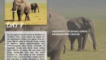 9 Days Wildlife Adventures, Arusha, Cultural Tours