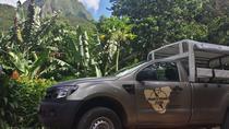 Moorea 4x4 Safari Tour, Moorea, 4WD, ATV & Off-Road Tours