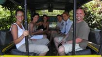 Private Tour: Moorea 4x4 Safari, Moorea, 4WD, ATV & Off-Road Tours