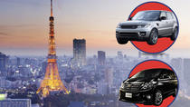 Tokyo Private Chauffeur Driving Sightseeing Tour - English Speaking Driver, Tokyo, Custom Private ...