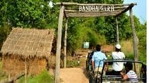03 Days Magnificent Bandhavgarh Tiger Safari, Madhya Pradesh, 4WD, ATV & Off-Road Tours