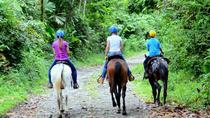 Horseback Ride to La Fortuna Waterfall, La Fortuna, Horseback Riding