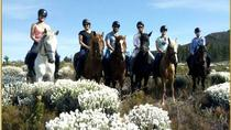 Orchard Trail, Hermanus, 4WD, ATV & Off-Road Tours