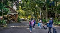 Borneo Tropical Rainforest Resort, Miri, 4WD, ATV & Off-Road Tours