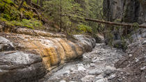 Grotto Canyon Hiking Tour, Banff, Hiking & Camping