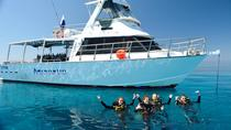 Great Barrier Reef duik- en snorkelcruise vanaf Townsville of Magnetic Island, Townsville, Scuba ...