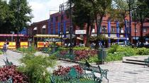 Coyoacan Frida Kahlo's house and Xochimilco all day tour, Mexico City, Full-day Tours