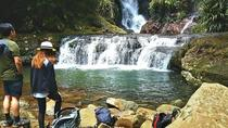 Lamington National Park Hiking Tour from the Gold Coast: Picnic Rock or Box Forest Falls, Gold ...