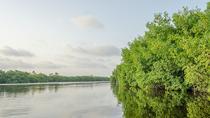 Nipchupte Lagoon Boat Adventure, Cancun, Sailing Trips