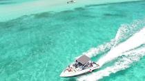 El Cielo and Snorkel Private Excursion, Cozumel, Snorkeling