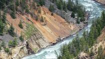 Self-Guided Tour of Yellowstone Upper Loop from Cody, Cody, Self-guided Tours & Rentals