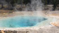 Yellowstone Guided Day Tour From Jackson Hole, Jackson Hole, Day Trips