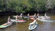 Island City ECO Paddle and Lesson, Fort Lauderdale, 4WD, ATV & Off-Road Tours