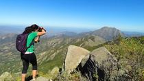 Hiking Tour in La Campana National Park from Santiago, Santiago, null