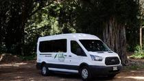 To and From Waikiki, Oahu, Airport & Ground Transfers