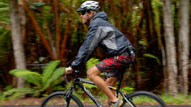 Kilauea Volcano and Lava Combo Bike Tour, Big Island of Hawaii, Historical & Heritage Tours