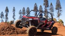 Guided Polaris Off-Road Tour , Hawaii, 4WD, ATV & Off-Road Tours