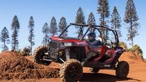 Guided Polaris UTV Cultural Tour - 2 people, Hawaii, 4WD, ATV & Off-Road Tours
