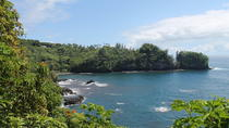 Hilo and Kalapana Big Island Backroads Mercedes Tour, Big Island of Hawaii, Private Sightseeing...