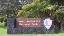 Volcanoes National Park and Waterfall Hilo Mercedes 11 PSGR Tour, Big Island of Hawaii, Private ...