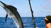 Private Deep Sea Fishing Tour Dubai, Dubai, Fishing Charters & Tours
