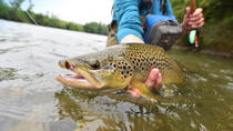 Half-Day Denver Fly Fishing Tour, Denver, Fishing Charters & Tours