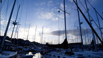 Full-Day Kinsale and West Cork Tour, Cork, null
