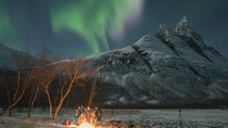 Northern Lights Trip, Tromso, 4WD, ATV & Off-Road Tours
