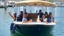 Hawaii's Private Electric Boat Tour for Up to 10 People, Oahu, Day Cruises