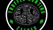 Truffle Hunting Zagreb, Zagreb, Cultural Tours