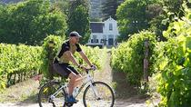 Private Radtour durch Constantia Winelands, Cape Town, Wine Tasting & Winery Tours