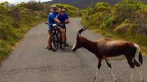 Private Radtour durch Kap Halbinsel von Kapstadt, Cape Town, Bike & Mountain Bike Tours